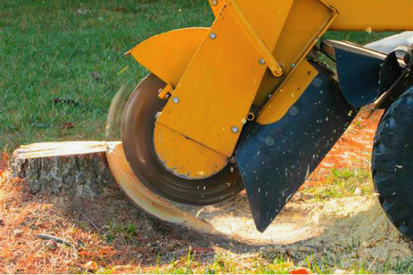Stump Grinding Sioux Falls